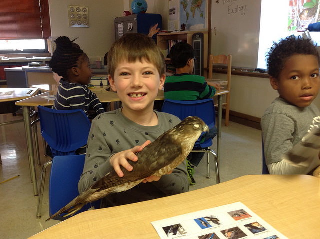 Irving 3rd graders learn about the birds with Science Alliance