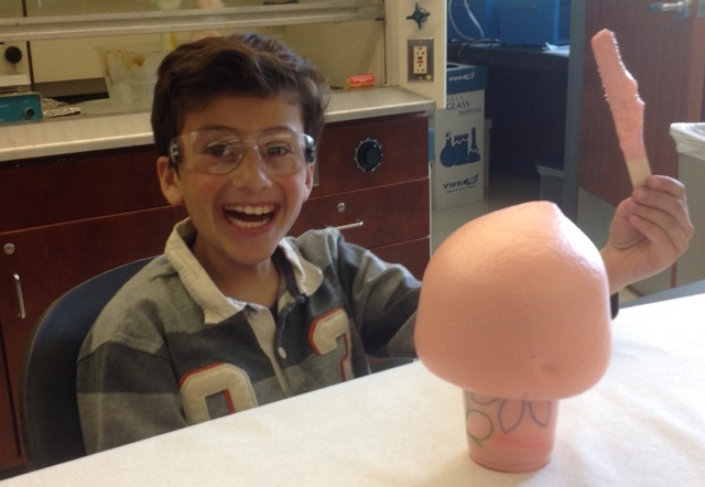 Mini-explosions catalyze student fascination with chemistry during Science Alliance field trip